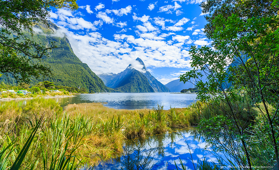 The beautiful Fjords of Milford Sound